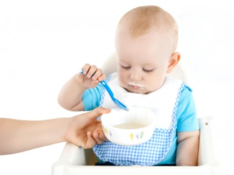 Baby Food Allergies